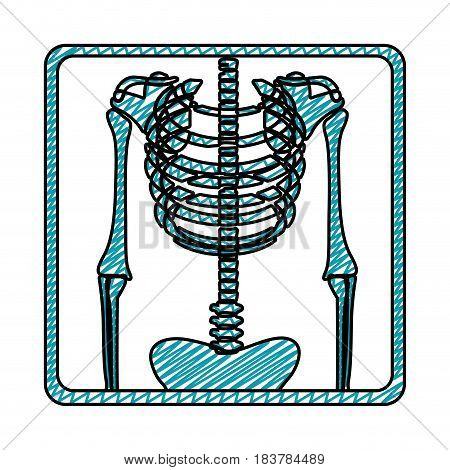 color pencil drawing of symbol of chest radiography vector illustration