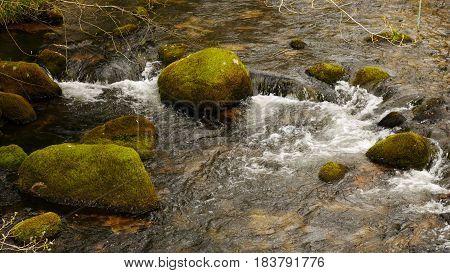 Mossy green rocks in a river on Dartmoor, Devon, England