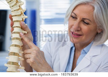 Female doctor holding spine model in medical office