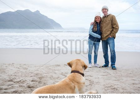 Happy couple looking at their pet dog at the beach