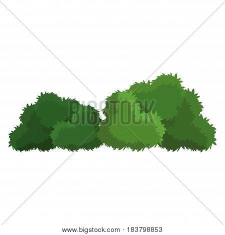 bush green natural foliage image vector illustration