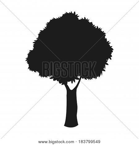 silhouette tree woody nature dark stem design vector illustration