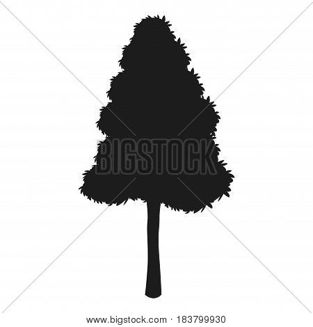 silhouette tree pine natural foliage desing vector illustration