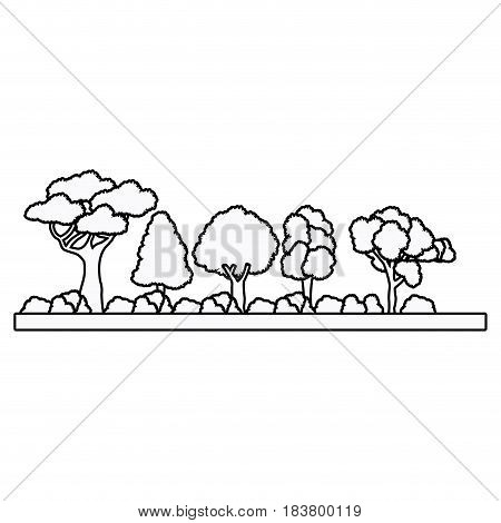 collection tree forest natural foliage outline vector illustration