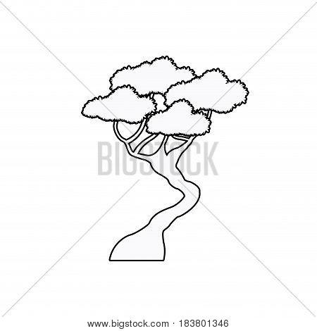 bonsai tree natural plant oriental outline vector illustration