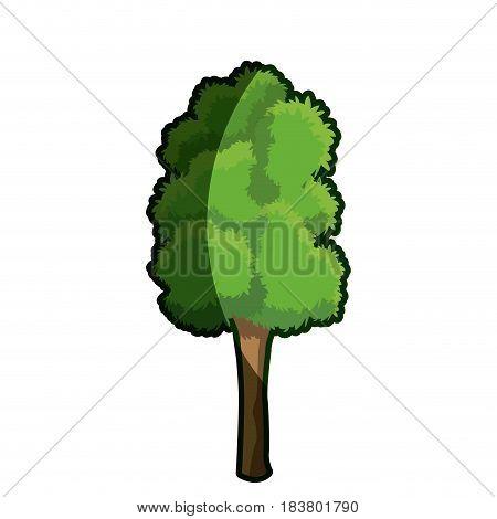 tree plant leaf foliage shadow vector illustration