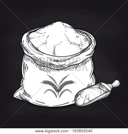 Hand drawn whole bag of wheat flour and wood spoon for flour on blackboard background. Vector illustration