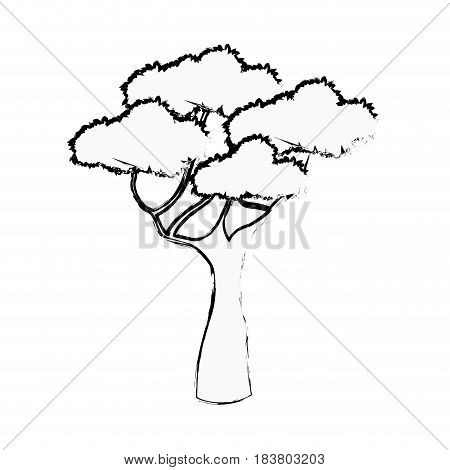 african tree foliage high forest sketch vector illustration