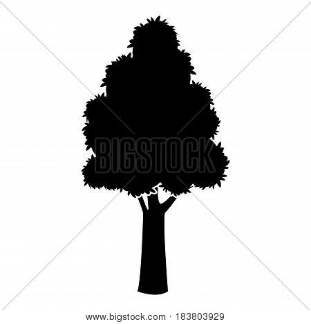 black tree silhouette trunk stem high plant vector illustration