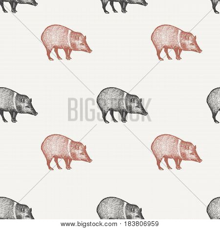 Summer seamless pattern with animals South America. Wild pig. Black and red peccary on pastel background. Hand drawing of wildlife. Vector illustration art. Vintage design for fabrics paper