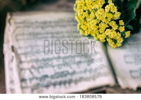 Abstract vintage music background yellow flowers on yellowed old music book with worn paper. Concept of romantic melody, forgotten and unforgotten past