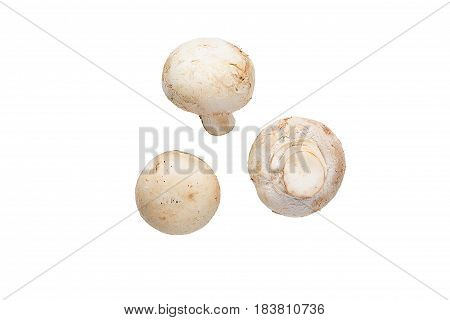 Whole Mushrooms Isolated On White Top View