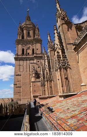 Old Cathedral of Salamanca Rooftop area, Spain