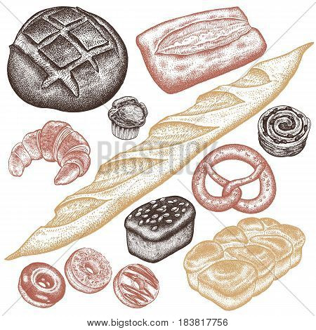 Bakery set. Bread white and black brioche ciabatta croissant French baguette bun pretzel donut muffin loaf isolated on white background. Vector food illustration art. Vintage engraving.