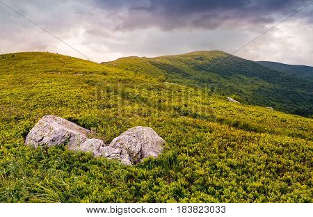 High Mountain Landscape
