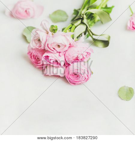 Light pink spring ranunkulus flowers on white marble background, selective focus, copy space, square crop. Spring greeting card concept