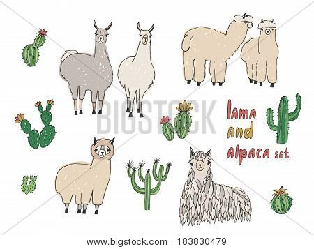 Cute Lama, Alpaca and cactuses set, Hand drawn vector illustration