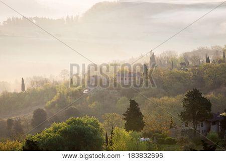 Foggy Morning At The Toscana
