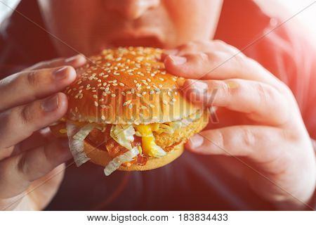 Thick or fat man bites hamburger, sunlight filter effect, close-up. Fast food and obesity concept