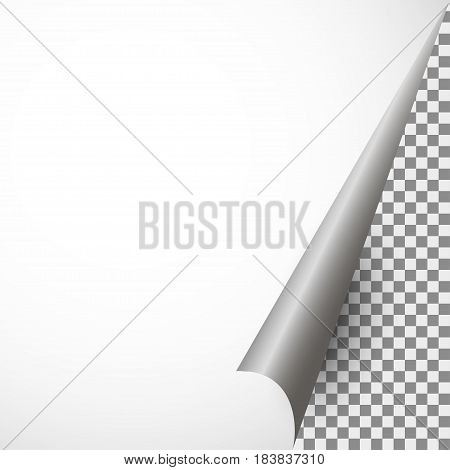 Realistic piece of paper with a curved corner on a transparent background.