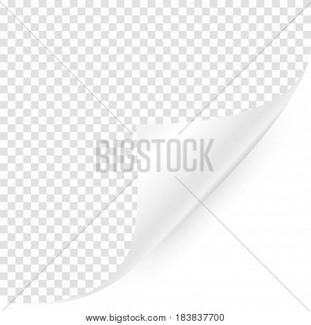 Curled corner with shadow on transparent background. Realistic blank page. Vector illustration