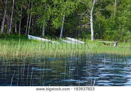 Summer landscape with fishing boats on the shore of the Lake Seliger near the birch forest. Russia