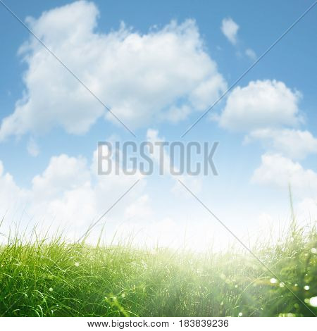 Landscape with meadow and sun rays in spring for a background