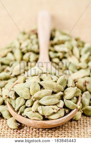 Green cardamom pods heap on wooden spoon rustic sack background