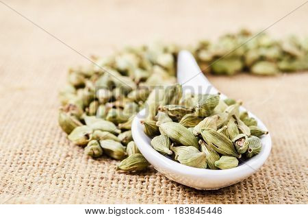 The Green cardamom pods heap on spoon.
