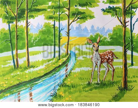 Illustration with markers: small fawn in a spring forest near a stream