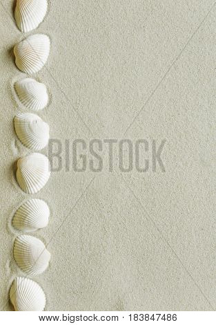 Border of seashells on the background of sea sand with space for text