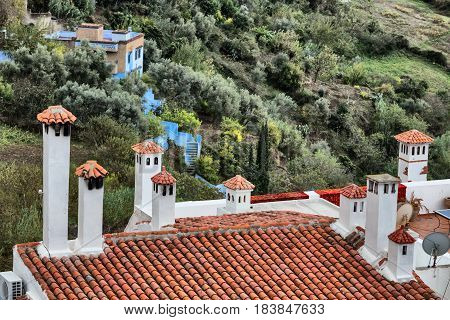 Tile roof with chimneys on green valley background