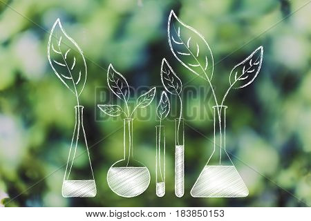 Lab Bottles With Leaves Growing Out Of Them Instead Of Chemical Solutions