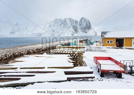 Fish processing plant in Sakrisoy fishing village of Lofotens