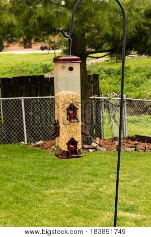 bird feeder on a sheppards hook in the yard