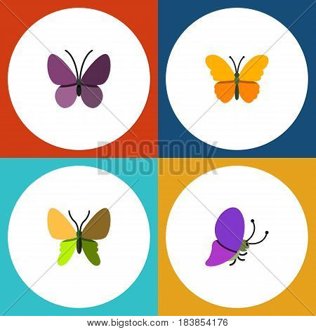 Flat Moth Set Of Summer Insect, Beauty Fly, Butterfly And Other Vector Objects. Also Includes Moth, Summer, Butterfly Elements.