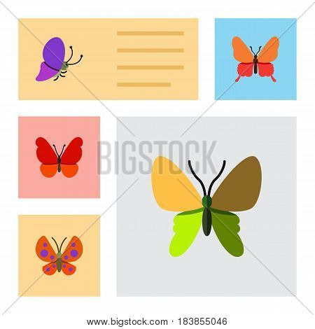 Flat Butterfly Set Of Monarch, Summer Insect, Danaus Plexippus And Other Vector Objects. Also Includes Monarch, Milkweed, Moth Elements.