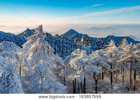 Sunrise above the peaks of Huangshan National park. China.