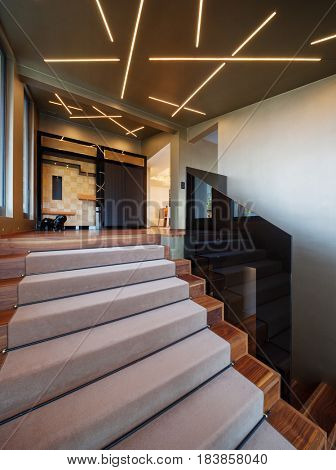 Modern home entrance, stairs with glass parapet