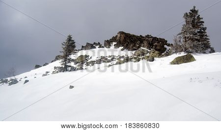 Ztracene kameny quartzite rock formation with snow and few isolated trees in Jeseniky mountains in Czech republic