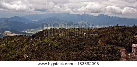 view to Krivanska Mala Fatra mountain range from Velky Choc hill in Chocske vrchy mountains in Slovakia