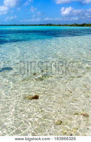 Crystal clear water in the Caribbean Sea near Tulum Mexico