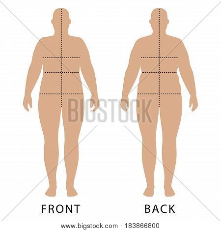 Full length front and back view of a fat standing naked woman outlined silhouette with marked body sizes lines isolated on white background. Vector illustration. You can use this image for fashion design and etc.