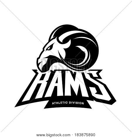 Furious ram sport club vector logo concept isolated on white background. Modern professional team badge mascot design. Premium quality wild ram animal athletic division t-shirt tee print illustration.