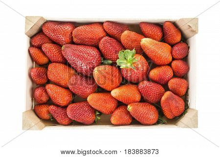 Red Ripe Strawberries In Wooden Box, Isolated On White Background.