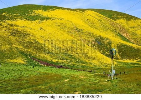 March 25, 2017 in Carrizo Plain, CA:  Abandoned forgotten ranchland with a rustic old windmill taken in the Carrizo Plain, CA where tourists can view spring wildflowers and historic abandoned ranchlands