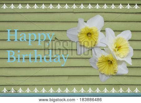 The greeting Happy Birthday with daffodils and fun border atop a light green wall with imperfections and wear