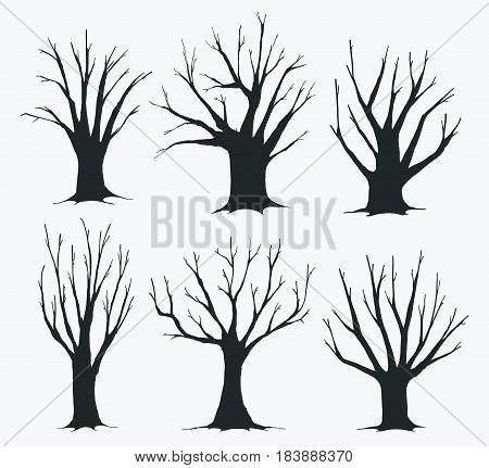 Collection of silhouettes of different trees. Trees silhouettes