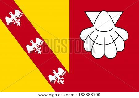 Flag of Chateau-Salins is a commune in the Moselle department in Grand Est in north-eastern France. Vector illustration