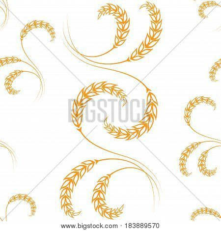 Vector illustration with pictures of wheat, rye, barley isolated on white background. Patern.